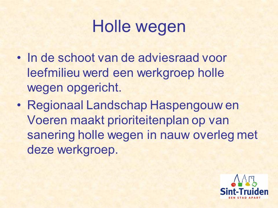 Holle wegen In de schoot van de adviesraad voor leefmilieu werd een werkgroep holle wegen opgericht.
