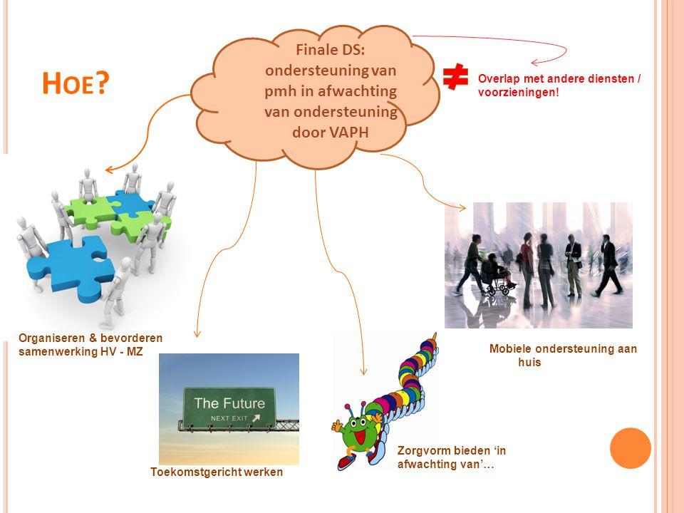 H OE ? Toekomstgericht werken Overlap met andere diensten / voorzieningen! Organiseren & bevorderen samenwerking HV - MZ Zorgvorm bieden 'in afwachtin