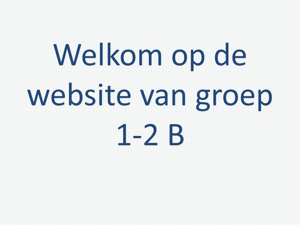 Welkom op de website van groep 1-2 B