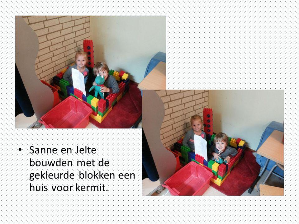Sanne en Jelte bouwden met de gekleurde blokken een huis voor kermit.