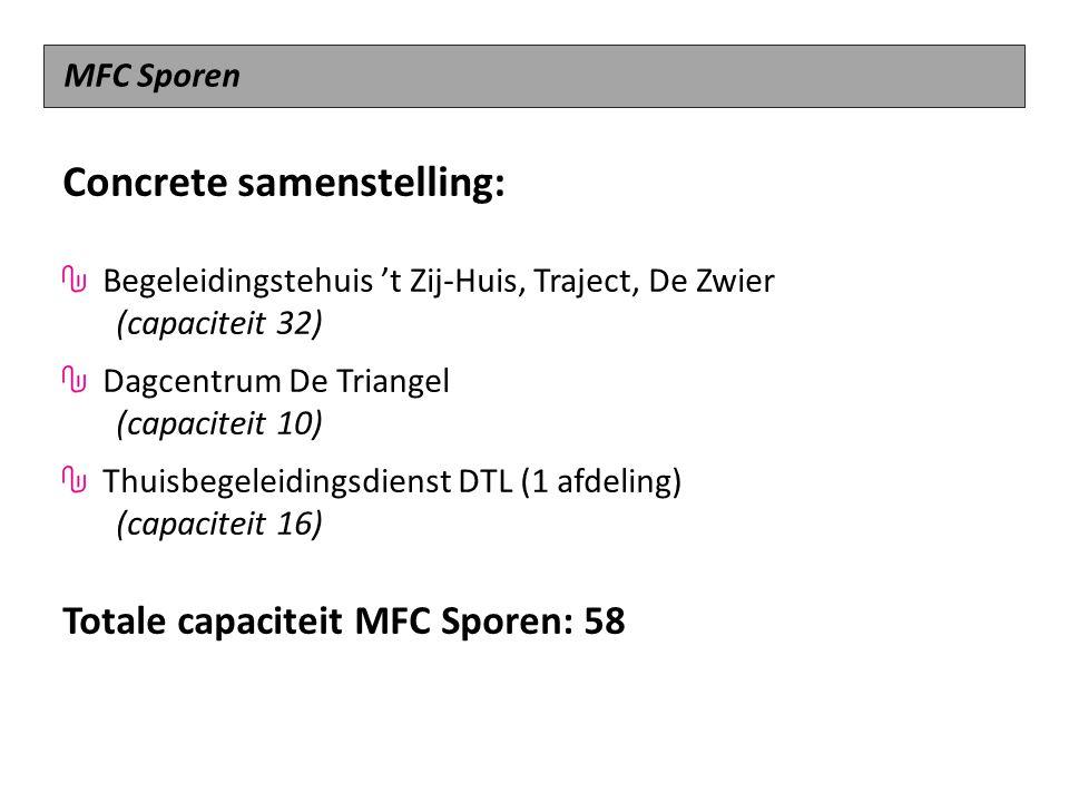 Concrete samenstelling: Begeleidingstehuis 't Zij-Huis, Traject, De Zwier (capaciteit 32) Dagcentrum De Triangel (capaciteit 10) Thuisbegeleidingsdien