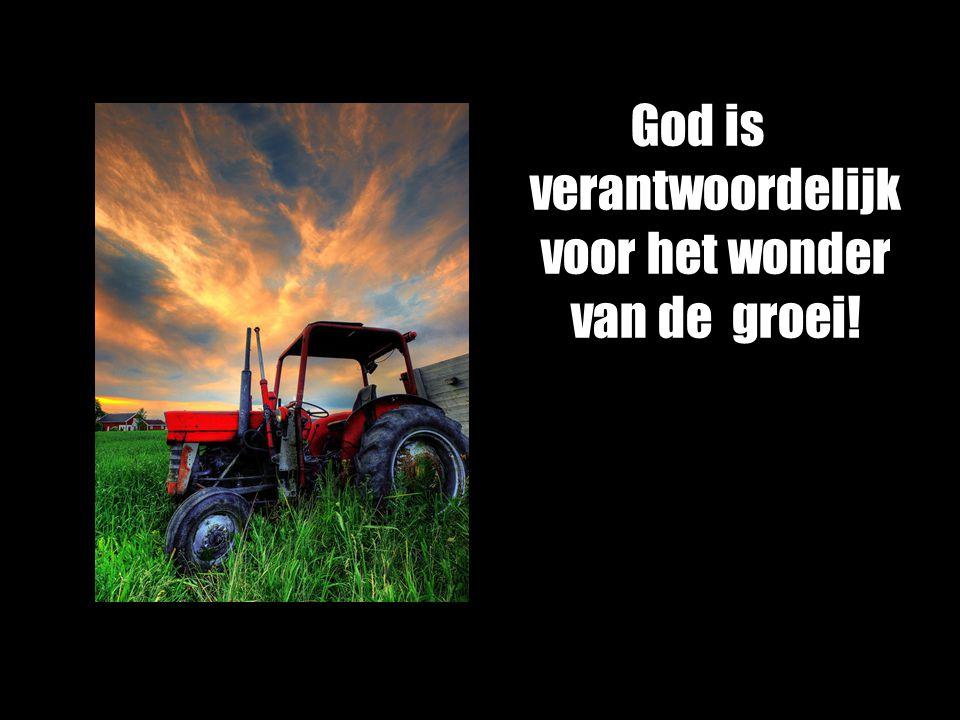 God is verantwoordelijk voor het wonder van de groei!