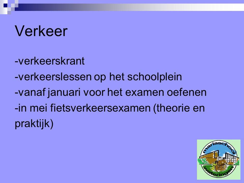 Verkeer -verkeerskrant -verkeerslessen op het schoolplein -vanaf januari voor het examen oefenen -in mei fietsverkeersexamen (theorie en praktijk)