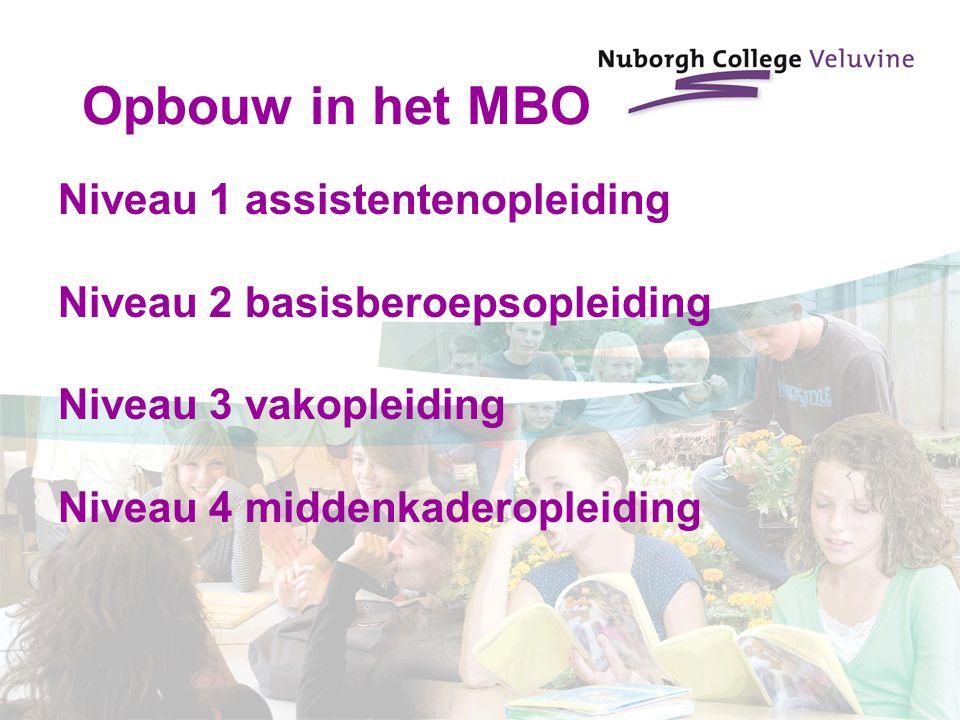 Opbouw in het MBO Niveau 1 assistentenopleiding Niveau 2 basisberoepsopleiding Niveau 3 vakopleiding Niveau 4 middenkaderopleiding
