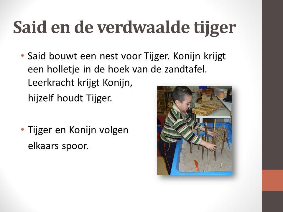 Said en de verdwaalde tijger Said bouwt een nest voor Tijger.