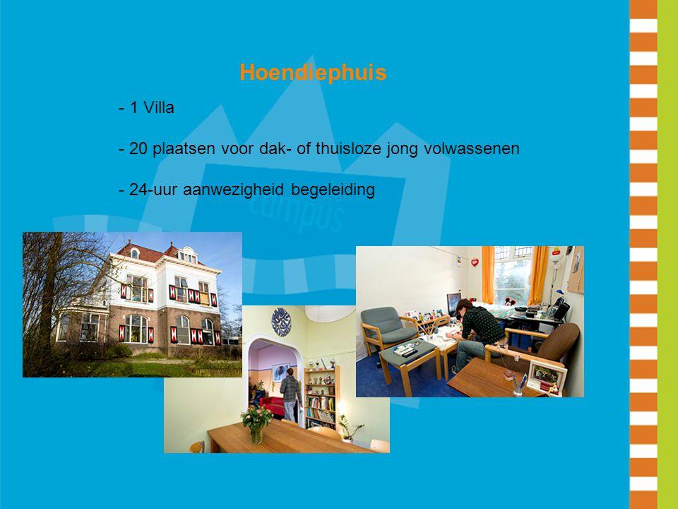 Hoendiephuis - 1 Villa - 20 plaatsen voor dak- of thuisloze jong volwassenen - 24-uur aanwezigheid begeleiding