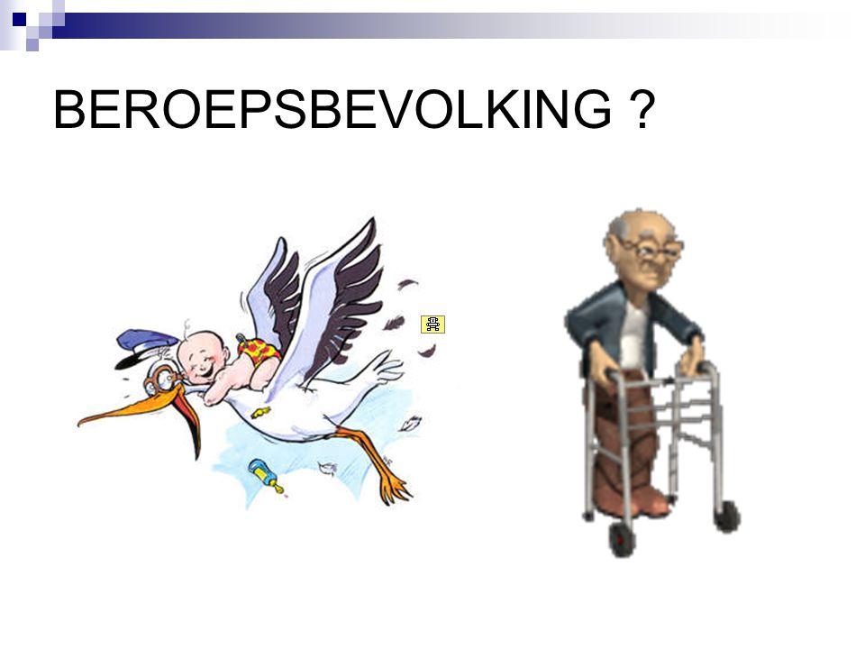 BEROEPSBEVOLKING ?