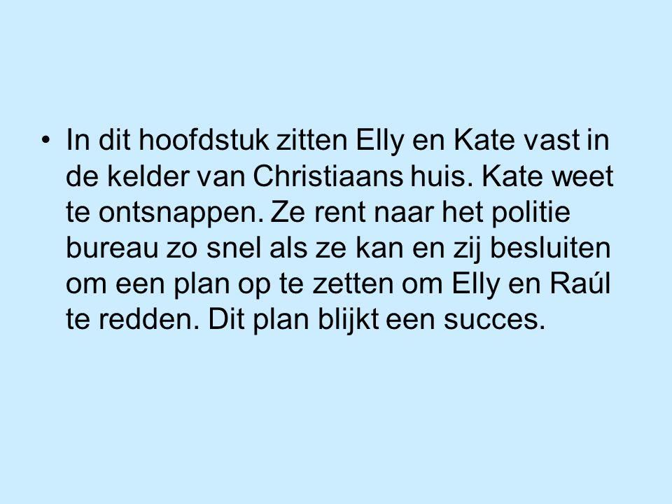 In dit hoofdstuk zitten Elly en Kate vast in de kelder van Christiaans huis. Kate weet te ontsnappen. Ze rent naar het politie bureau zo snel als ze k