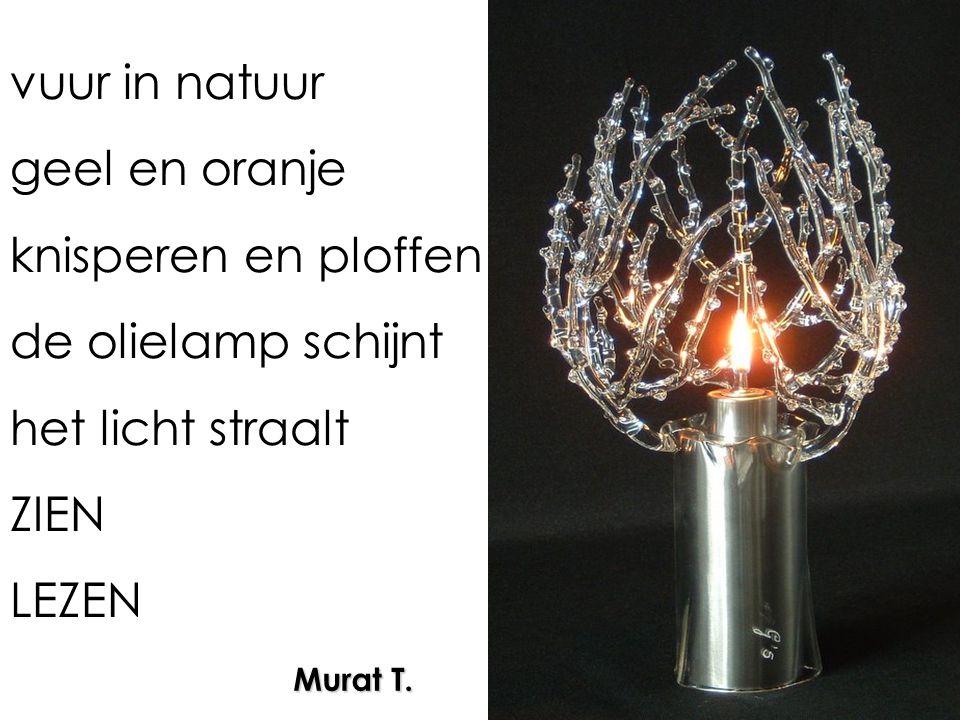 vuur in natuur geel en oranje knisperen en ploffen de olielamp schijnt het licht straalt ZIEN LEZEN Murat T.