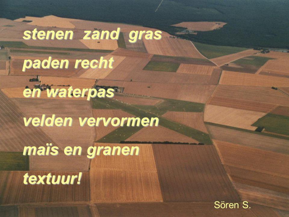 stenen zand gras paden recht en waterpas velden vervormen maïs en granen textuur! Sören S.