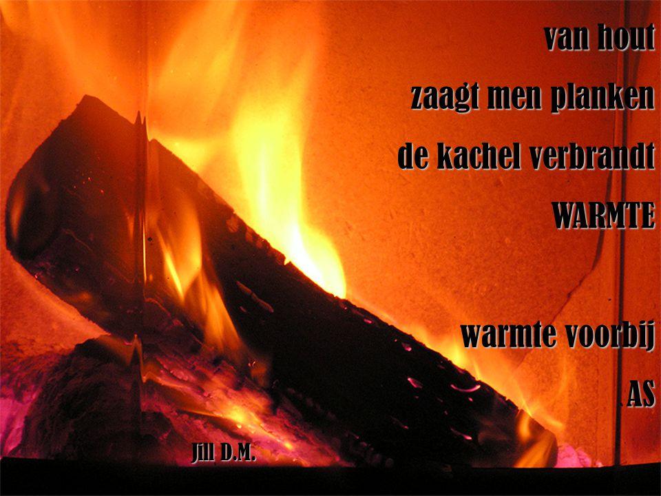 van hout zaagt men planken de kachel verbrandt WARMTE warmte voorbij AS Jill D.M.