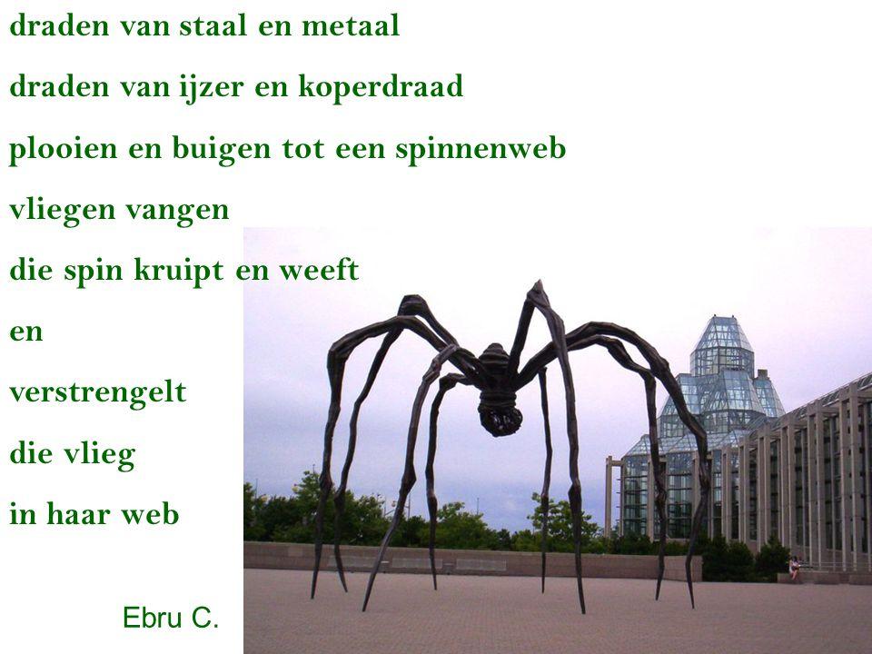 draden van staal en metaal draden van ijzer en koperdraad plooien en buigen tot een spinnenweb vliegen vangen die spin kruipt en weeft en verstrengelt die vlieg in haar web Ebru C.