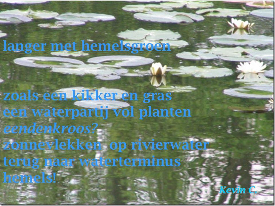 langer met hemelsgroen zoals een kikker en gras een waterpartij vol planten eendenkroos? zonnevlekken op rivierwater terug naar waterterminus hemels!