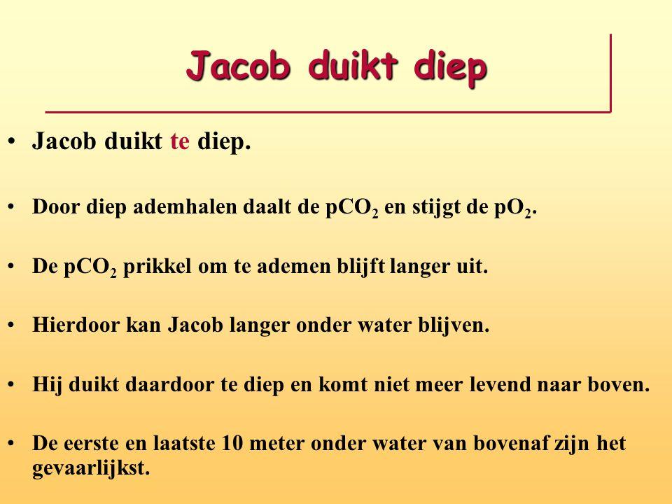 Jacob duikt diep Jacob duikt te diep.Door diep ademhalen daalt de pCO 2 en stijgt de pO 2.