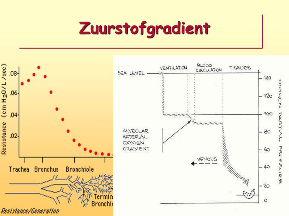 Problemen met het surfactant