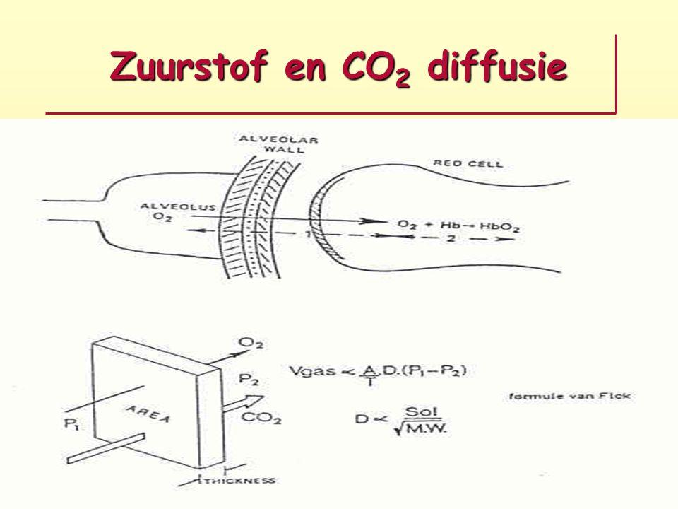 Zuurstof en CO 2 diffusie