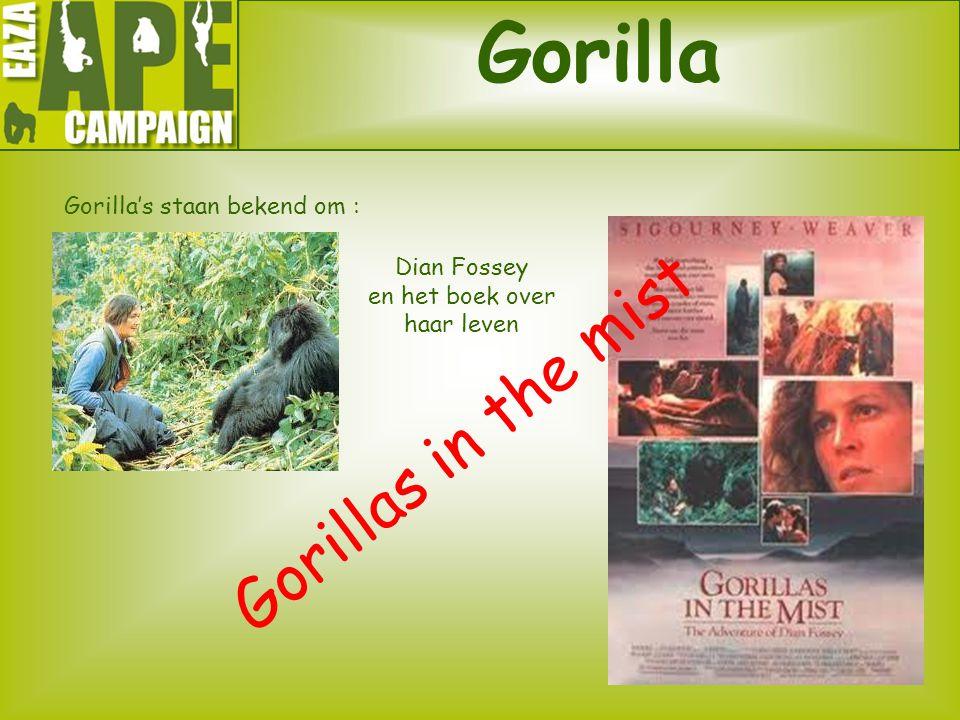 Gorilla Gorilla's staan bekend om : Gorillas in the mist Dian Fossey en het boek over haar leven