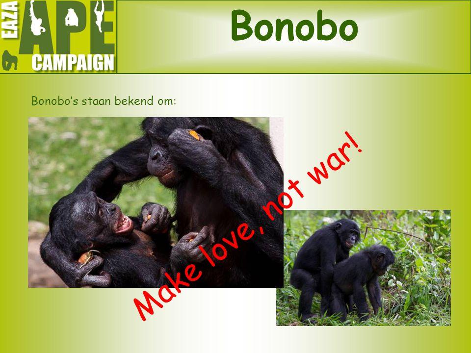 Bonobo Bonobo's staan bekend om: Make love, not war!