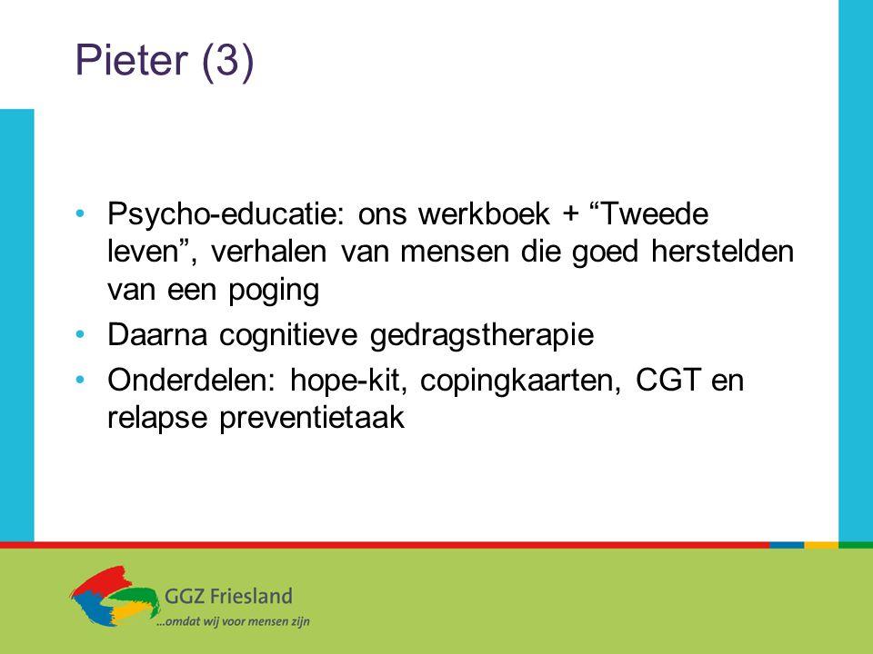 """Pieter (3) Psycho-educatie: ons werkboek + """"Tweede leven"""", verhalen van mensen die goed herstelden van een poging Daarna cognitieve gedragstherapie On"""