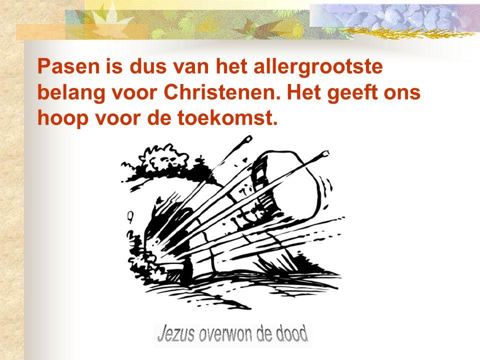 Want Jezus zei: Wees niet ongerust, maar vertrouw op God en op mij. In het huis van mijn Vader zijn veel kamers; zou ik anders gezegd hebben dat ik ee