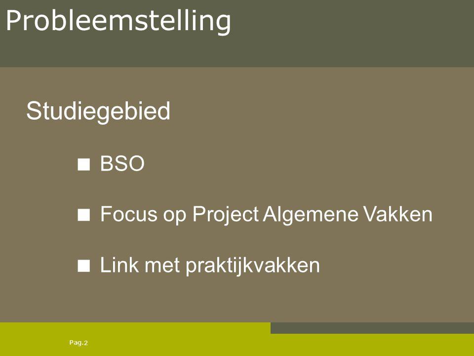 Pag. Studiegebied  BSO  Focus op Project Algemene Vakken  Link met praktijkvakken 2 Probleemstelling
