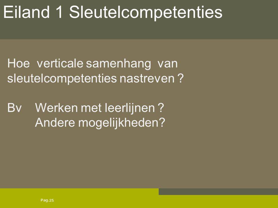 Pag. Hoe verticale samenhang van sleutelcompetenties nastreven ? Bv Werken met leerlijnen ? Andere mogelijkheden? 25 Eiland 1 Sleutelcompetenties