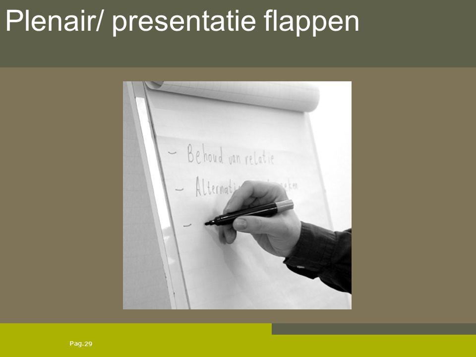 Pag. 29 Plenair/ presentatie flappen