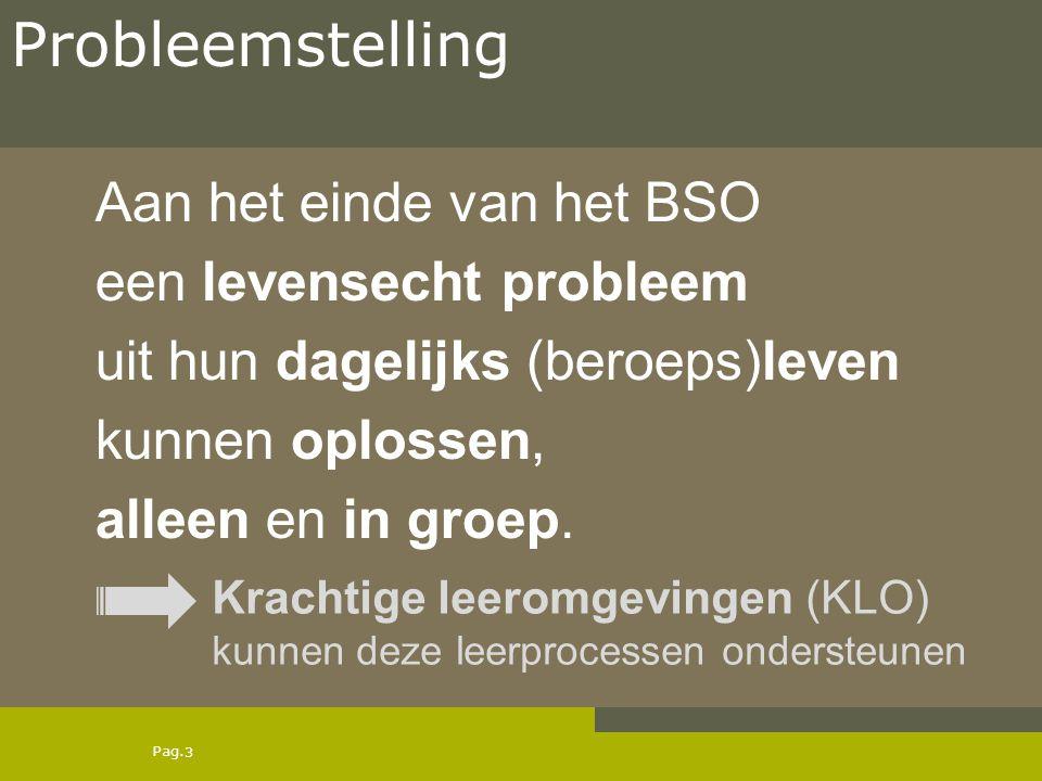 Pag. Aan het einde van het BSO een levensecht probleem uit hun dagelijks (beroeps)leven kunnen oplossen, alleen en in groep. 3 Probleemstelling Kracht