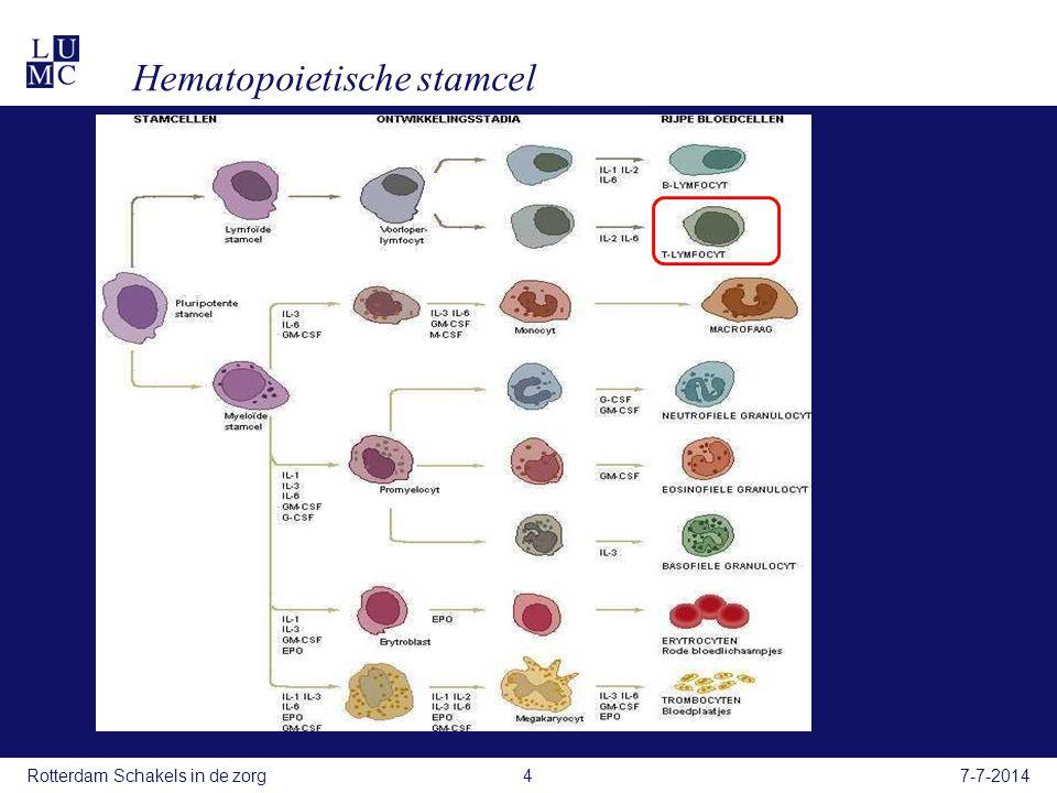 Hematopoietische stamcel 7-7-2014Rotterdam Schakels in de zorg4