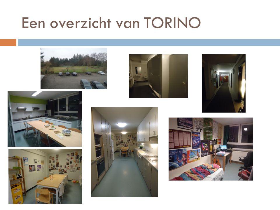 Een overzicht van TORINO