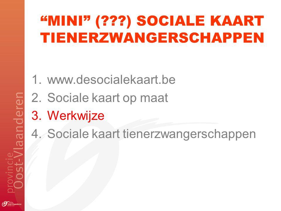 """""""MINI"""" (???) SOCIALE KAART TIENERZWANGERSCHAPPEN 1.www.desocialekaart.be 2.Sociale kaart op maat 3.Werkwijze 4.Sociale kaart tienerzwangerschappen"""