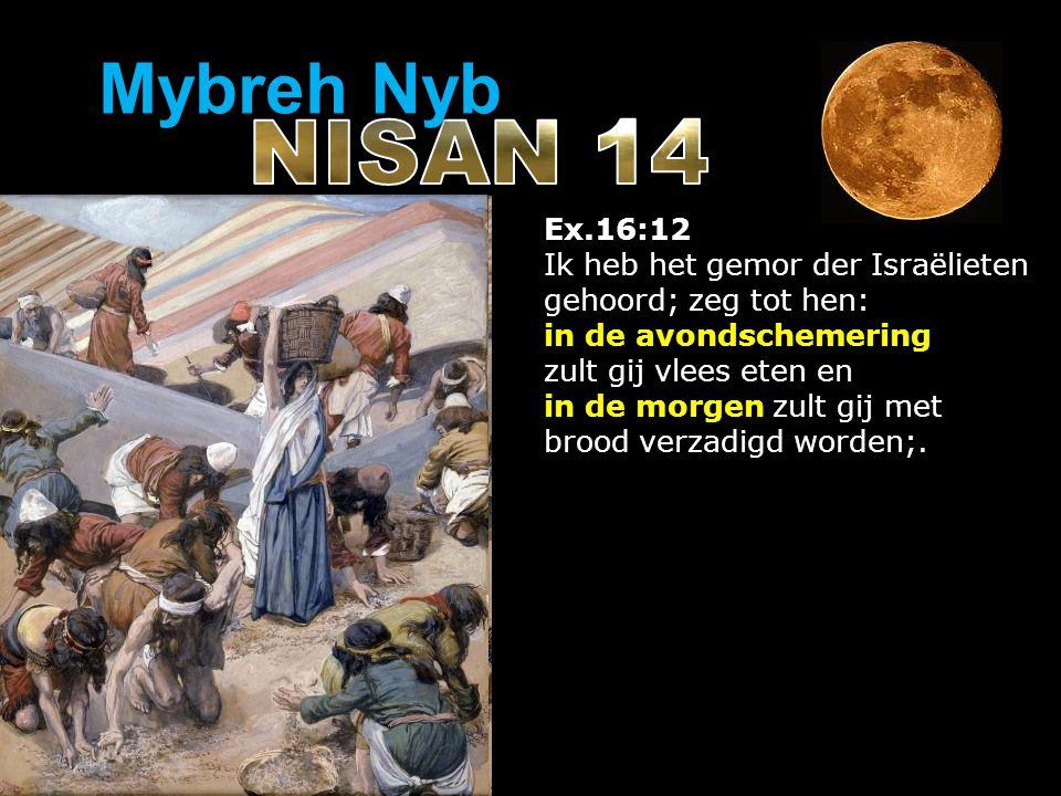 Ex.16:12 Ik heb het gemor der Israëlieten gehoord; zeg tot hen: in de avondschemering zult gij vlees eten en in de morgen zult gij met brood verzadigd