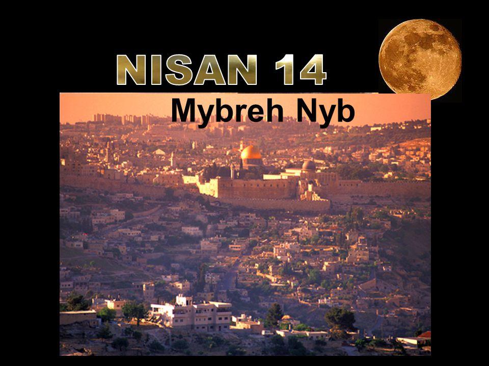 rqbb Mybreh Nyb