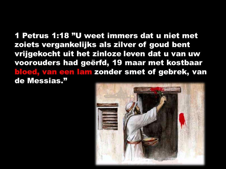 1 Petrus 1:18 U weet immers dat u niet met zoiets vergankelijks als zilver of goud bent vrijgekocht uit het zinloze leven dat u van uw voorouders had geërfd, 19 maar met kostbaar bloed, van een lam zonder smet of gebrek, van de Messias.