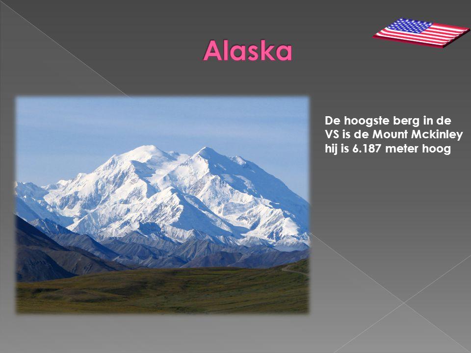De hoogste berg in de VS is de Mount Mckinley hij is 6.187 meter hoog