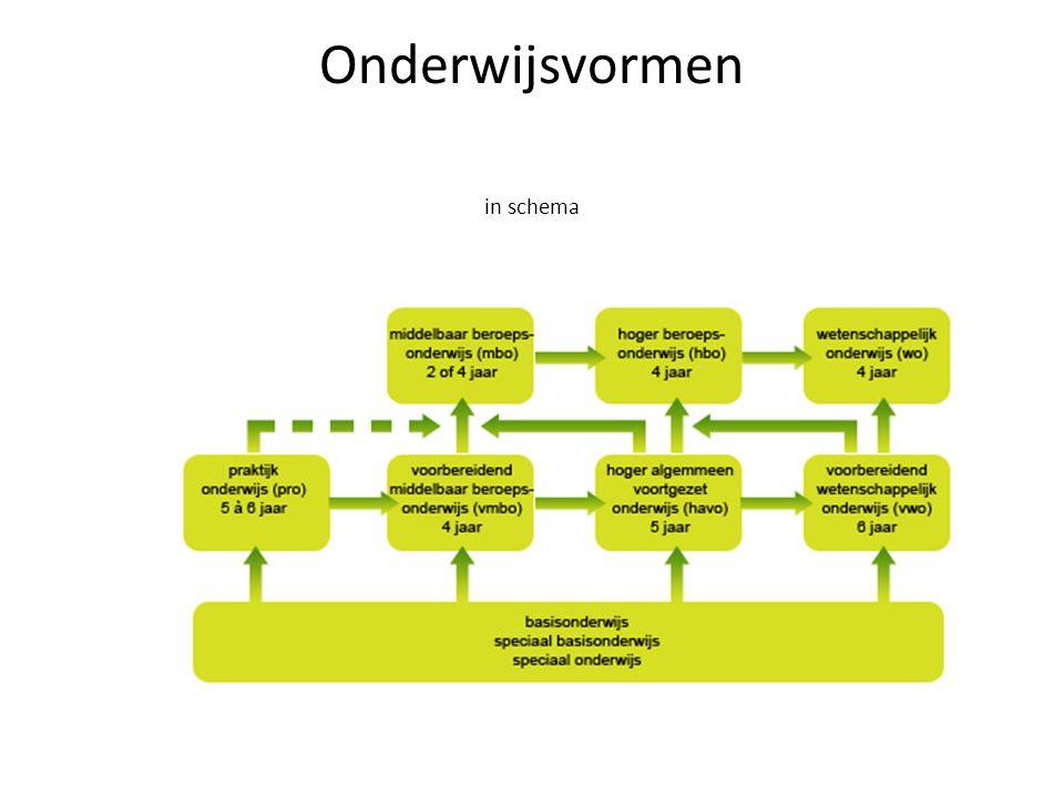 Onderwijsvormen in schema