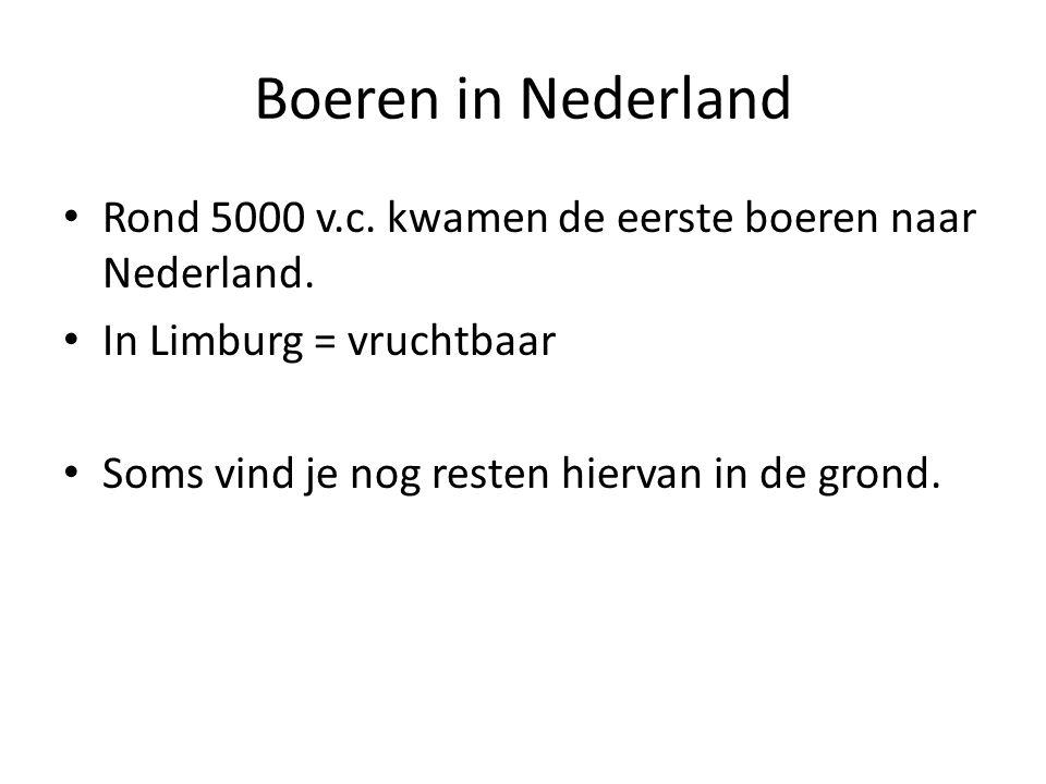 Boeren in Nederland Rond 5000 v.c.kwamen de eerste boeren naar Nederland.