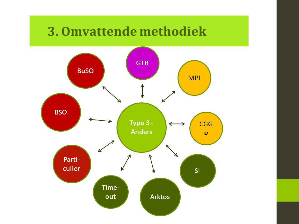 3. Omvattende methodiek Type 3 - Anders SI BSO MPI GTB BuSO CGG ᴪ Parti- culier Time- out Arktos