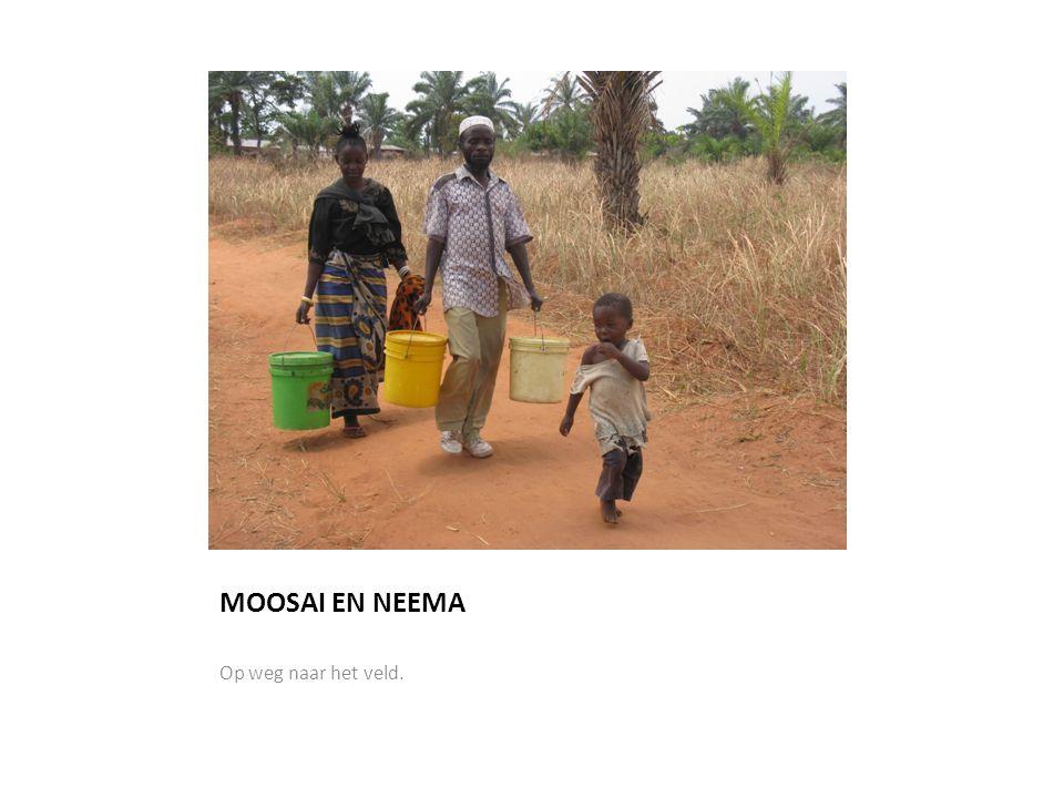 MOOSAI EN NEEMA Op weg naar het veld.