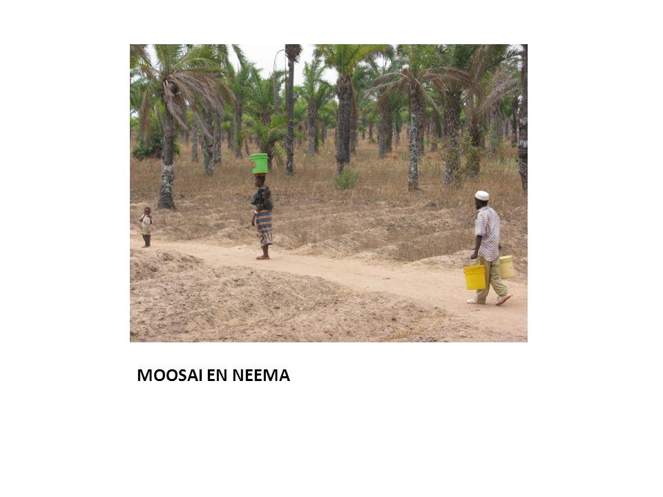 MOOSAI EN NEEMA