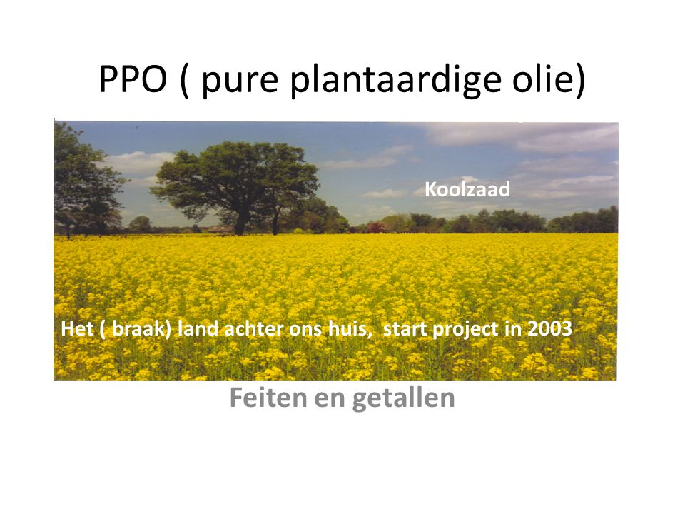 PPO ( pure plantaardige olie) Feiten en getallen Het ( braak) land achter ons huis, start project in 2003 Koolzaad