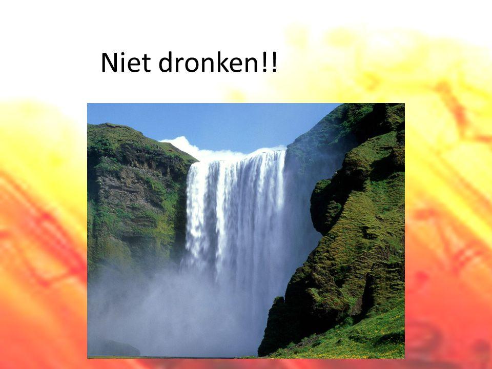 Niet dronken!!
