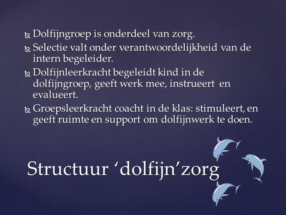  Dolfijngroep is onderdeel van zorg.  Selectie valt onder verantwoordelijkheid van de intern begeleider.  Dolfijnleerkracht begeleidt kind in de do