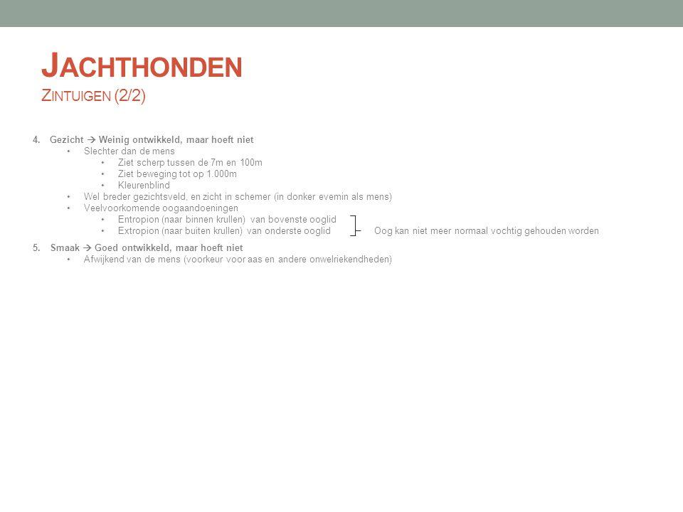 J ACHTHONDEN V EREISTE F YSISCHE E IGENSCHAPPEN Gezond, gebouwd voor het hem toebedachte werk, en goed gebouwd lijf Cryptorchisme (niet afgedaalde teelbal(len)), ec- of entropion, voor- of overbeten wijzen op degeneratie Volwassen gebit met 42 tanden: 22 in onderkaak, 20 in bovenkaak (2 molaren minder) Goede geestelijke eigenschappen Zenuwzwak of niet karaktervast  bang voor schot, handschuw, schothitsig, angstbijters, wild kapotbijten of begraven Kleine fouten kunnen weggewerkt worden door wil en karakter, grote fouten brengt vroegtijdige slijt mee Ideaal voor zwaar jachtwerkNiet ideaal voor zwaar jachtwerk KOP Lange muilTe smalle, te spitse, of te korte muil Krachtig gebit, schaargebitVoor- of overbeten Goed gesloten ogenEx- of entropion Niet te lange oren Middellange goedgespierde hals Te sterk ontwikkelde lippen ROMP Harde constitutie Droge en vaste knoken en spieren Goed gesloten schuine en losse schoudersOpen en te steile schouders Lange, diepe, brede borstZwakke borstpartij Breed bekken met goed gespierde, goed ontwikkelde achterhandSteile en overbebouwde achterhand Korte gespierde rugLange zadelrug POTEN Kromme rachitische poten met open voeten Kromme en naar mekaar toegestelde achterpoten