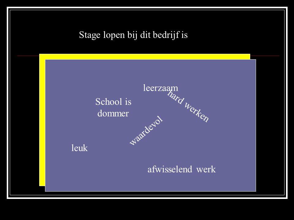 Stage lopen bij dit bedrijf is leuk waardevol leerzaam hard werken afwisselend werk School is dommer