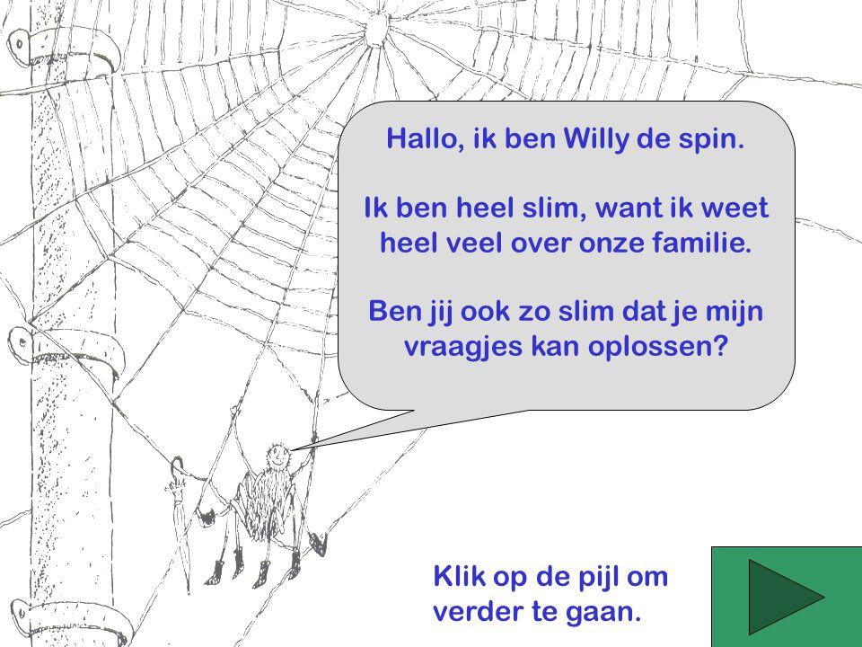 Hallo, ik ben Willy de spin. Ik ben heel slim, want ik weet heel veel over onze familie. Ben jij ook zo slim dat je mijn vraagjes kan oplossen? Klik o