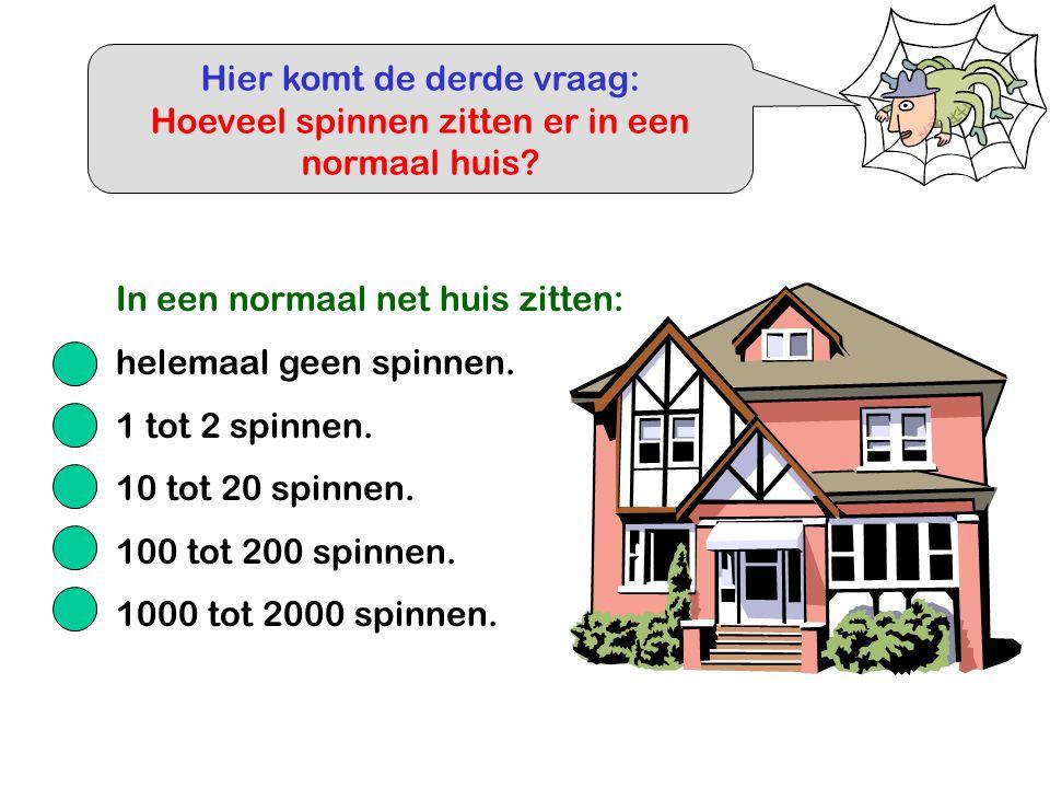 Hier komt de derde vraag: Hoeveel spinnen zitten er in een normaal huis? In een normaal net huis zitten: helemaal geen spinnen. 1 tot 2 spinnen. 10 to