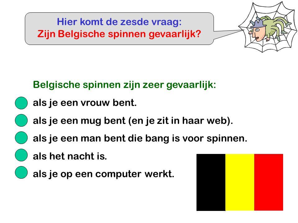 Hier komt de zesde vraag: Zijn Belgische spinnen gevaarlijk? Belgische spinnen zijn zeer gevaarlijk: als je een vrouw bent. als je een mug bent (en je