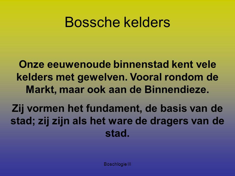 Boschlogie III Bossche kelders Onze eeuwenoude binnenstad kent vele kelders met gewelven. Vooral rondom de Markt, maar ook aan de Binnendieze. Zij vor