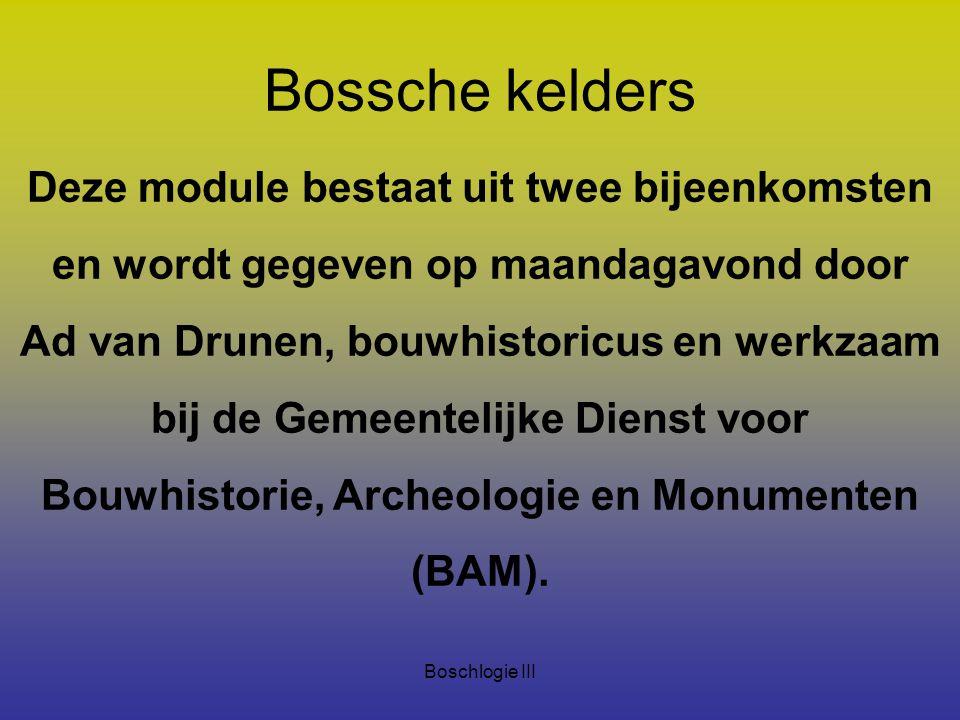 Boschlogie III Bossche kelders Deze module bestaat uit twee bijeenkomsten en wordt gegeven op maandagavond door Ad van Drunen, bouwhistoricus en werkz